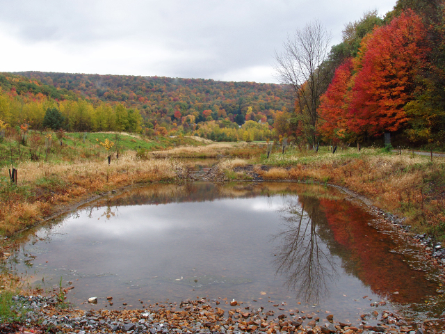[Acid pool #1 at the AMD-Art Project in Vintondale, Pennsylvania, USA, a collaboration between landscape architect Julie Bargmann, hydrogeologist Rober Deason, sculptor Stacy Levy, and historian Allan Comp; image from Stacy Levy courtesy of Wikimedia Commons]