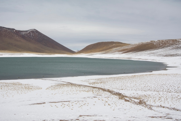 [glacial lagoon in the Andean Cordillera, high above the Atacama Desert; climatic and economic changes in the Atacama are leading to novel ecologies, mining operations, and tourism economies]